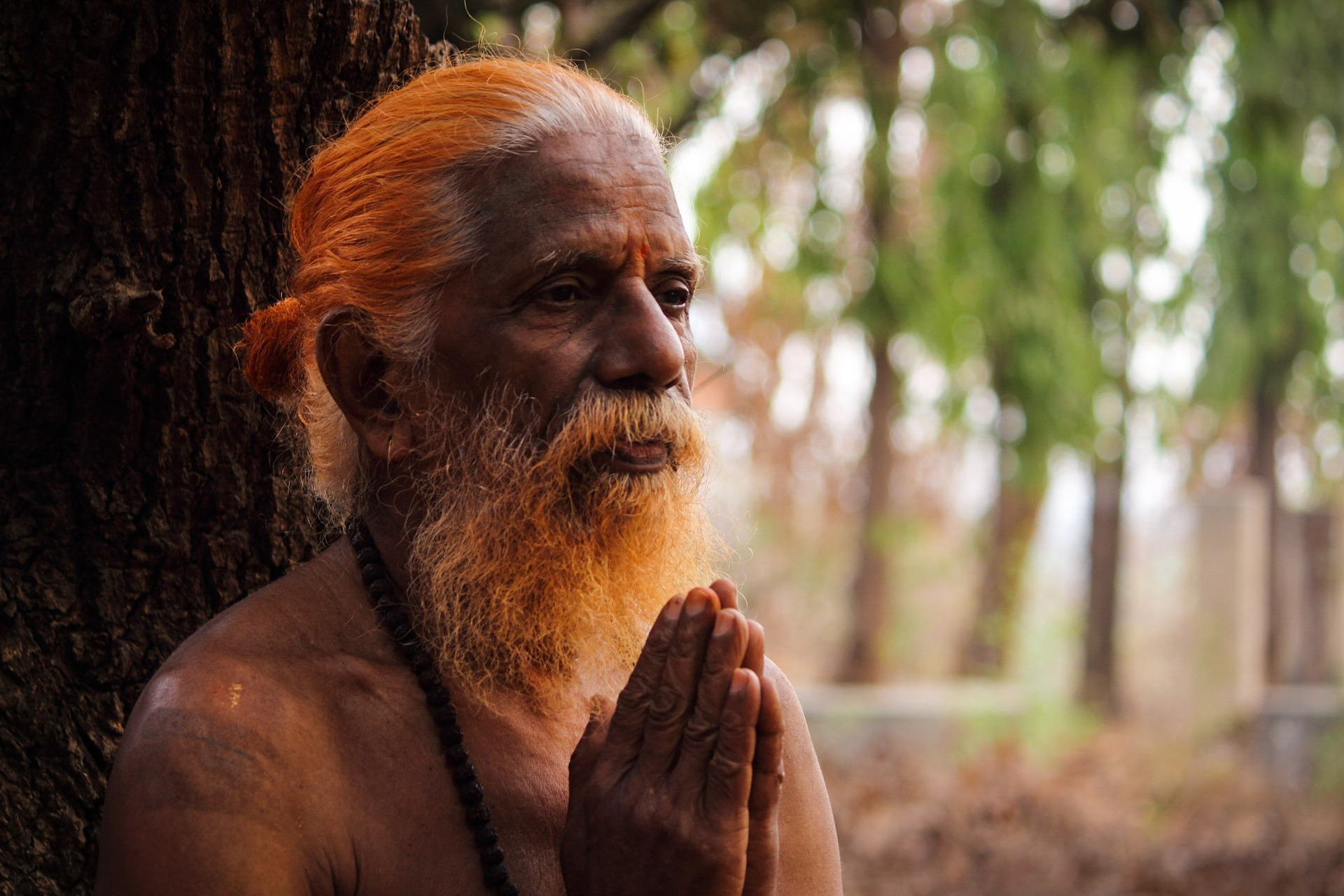 chant de l'univers - saddhu